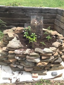 finished keyhole garden